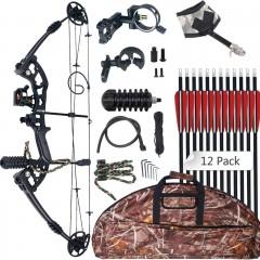 컴파운드보우 양궁 전문가 입문 장비 시노아트 30-55lbs 310fps